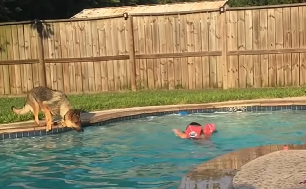 salto acqua pronto