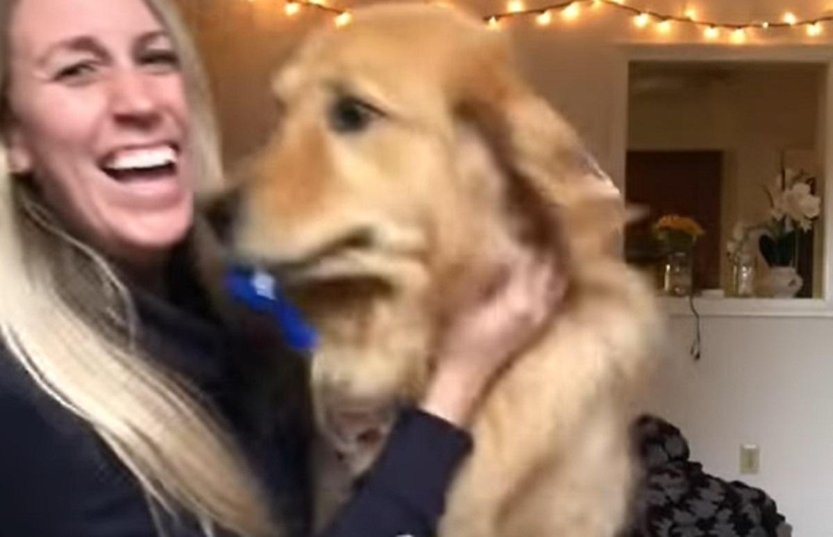 reazione buffa cane