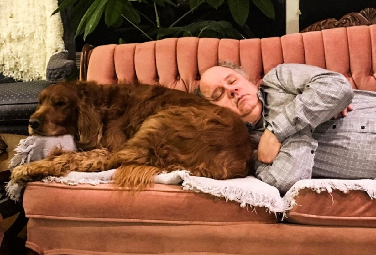 10 persone che non volevano animali-papà che dorme