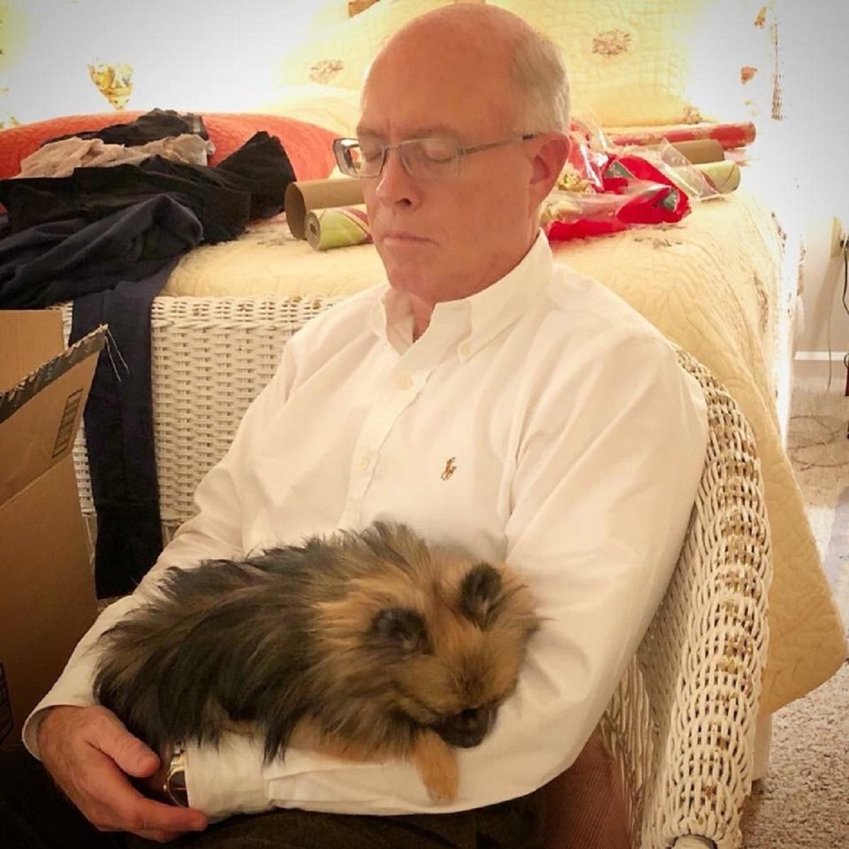 10 persone che non volevano animali-cane e papà dormono