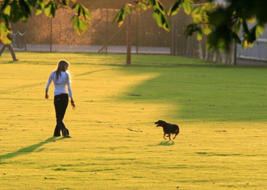 camminare cane mamma