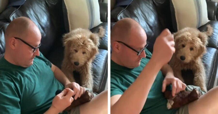 Leo osserva il padrone che cuce il suo peluche preferito rotto