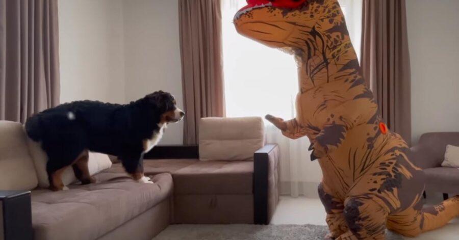 Cane che sfida un t rex