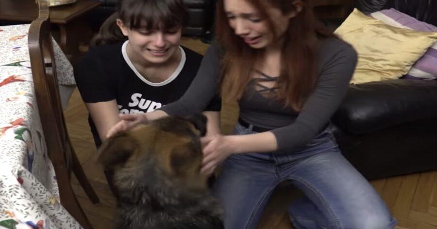 una ragazza si commuove quando conosce Stolz,il nuovo cucciolo dei nonni