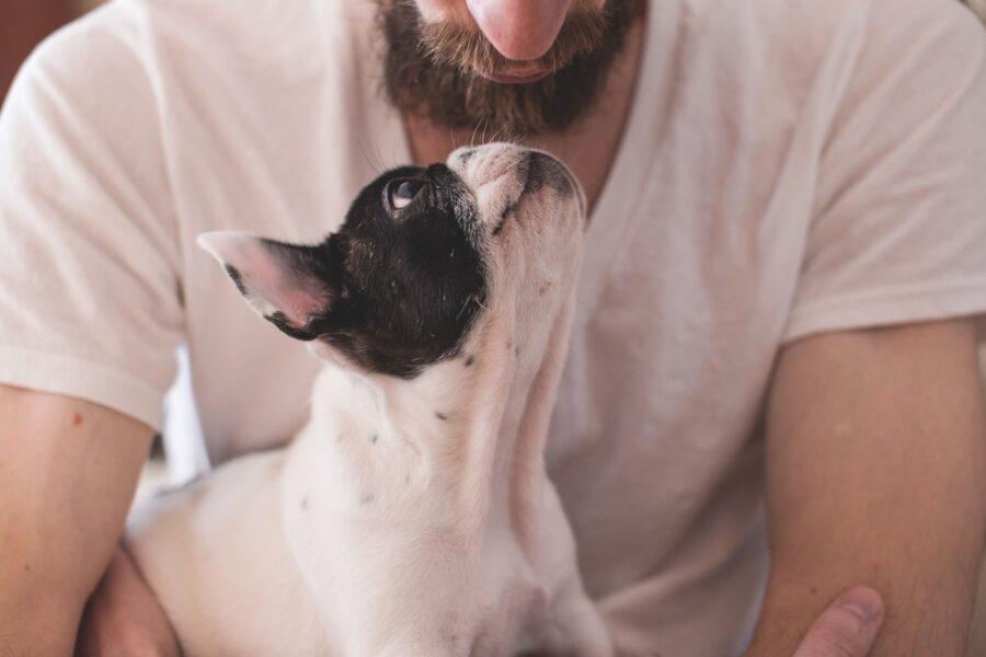 ragazzo dà un bacio al suo cucciolo