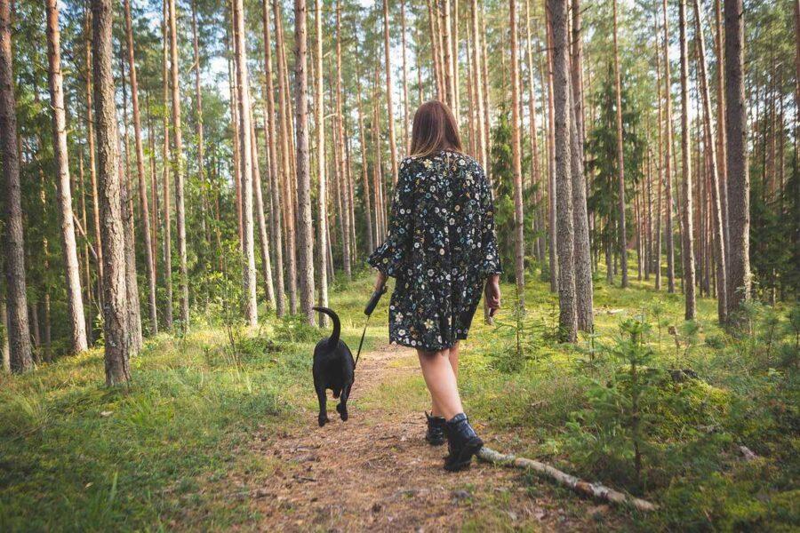 ragazza passeggia nel bosco con il cane