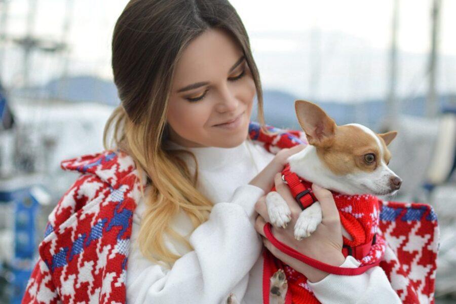ragazza bellissima abbraccia il suo chihuahua
