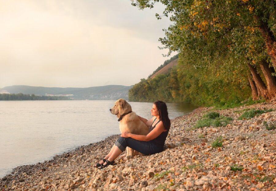cane proprietaria riva lago