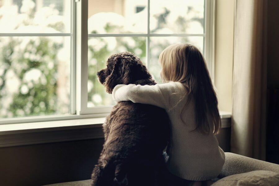 cane e bambina alla finestra