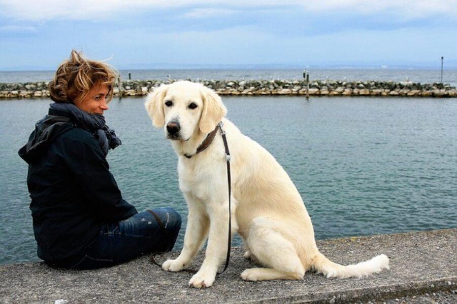 cane e donna al mare