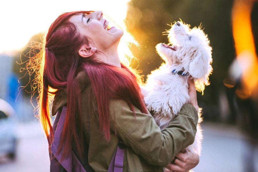 cane bianco con ragazza