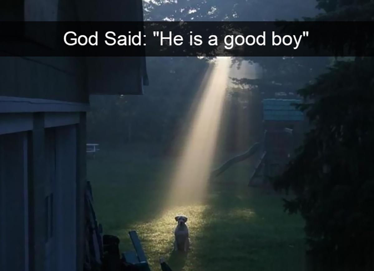 profezia divina