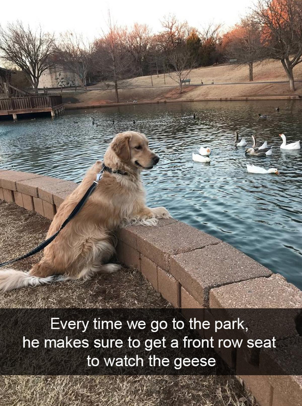 bravi ragazzi-lago