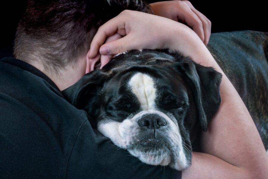 ragazzo che abbraccia il suo cane