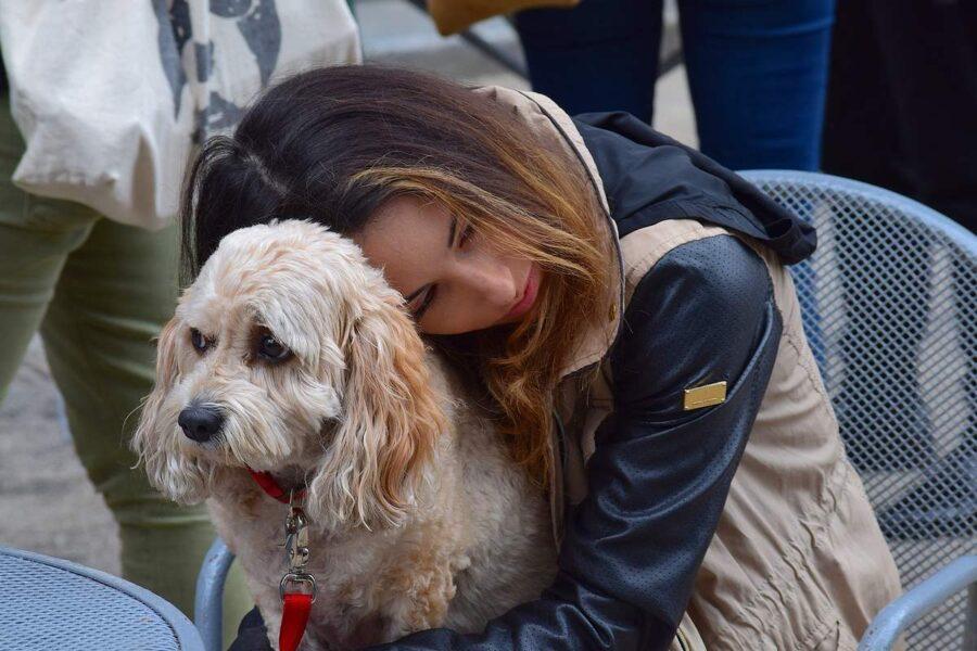 ragazza abbraccia un cane