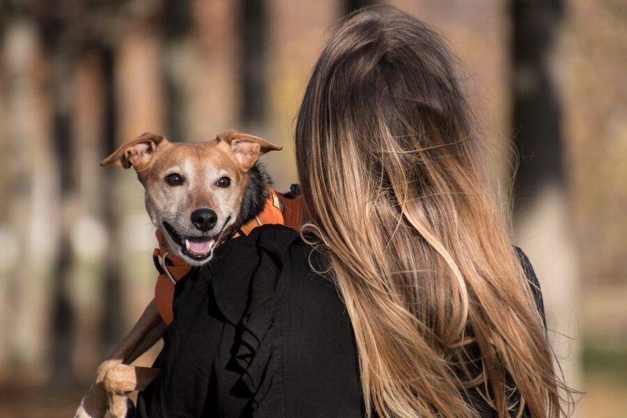 ragazza tiene in braccio un cane