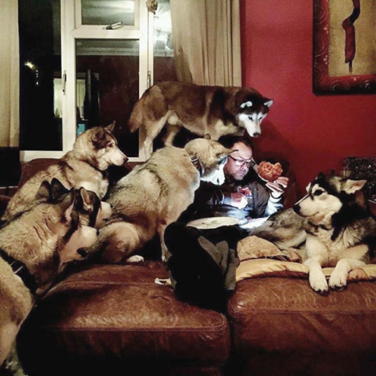 cani e cibo-Branco alla riscossa