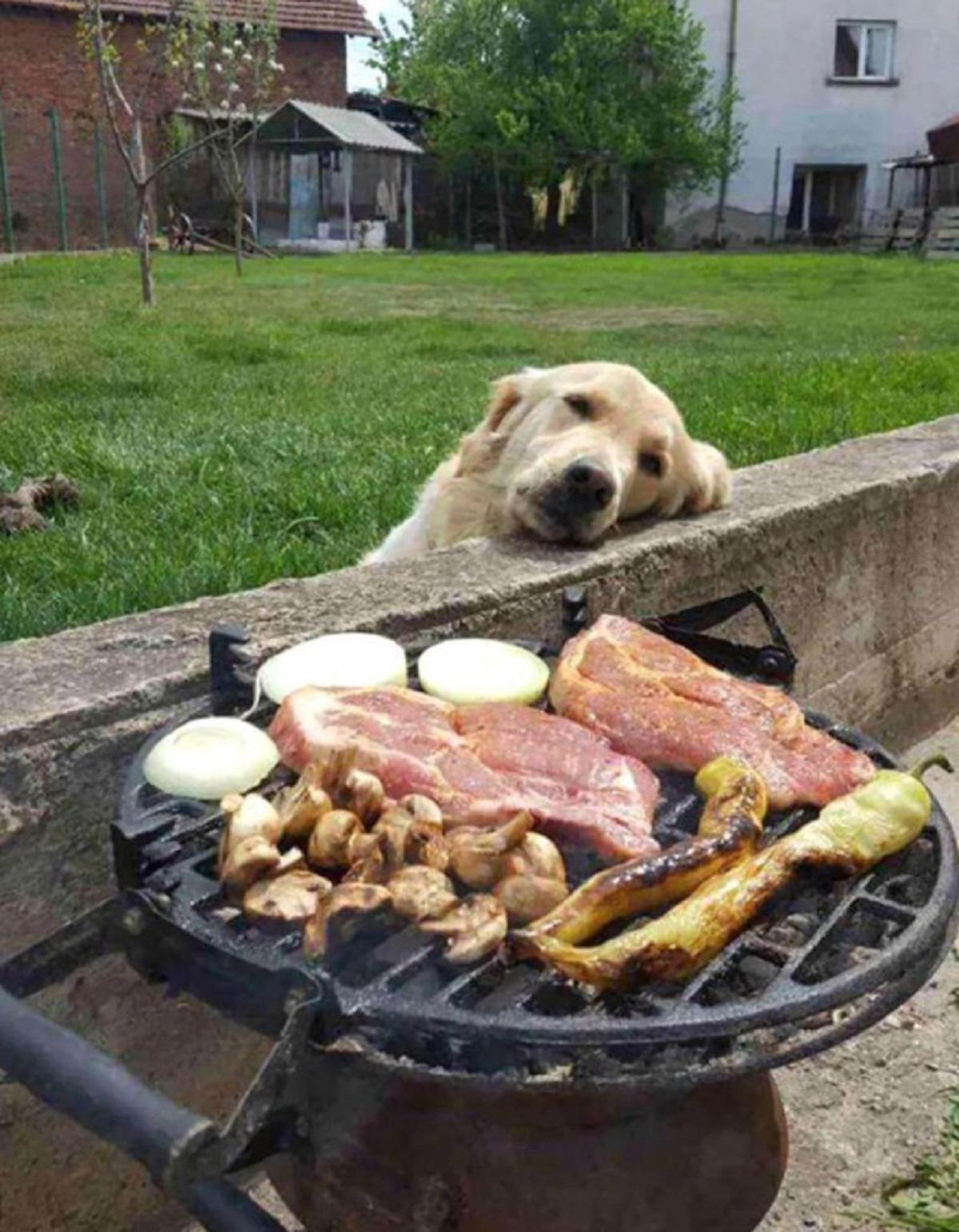 sognobarbecue