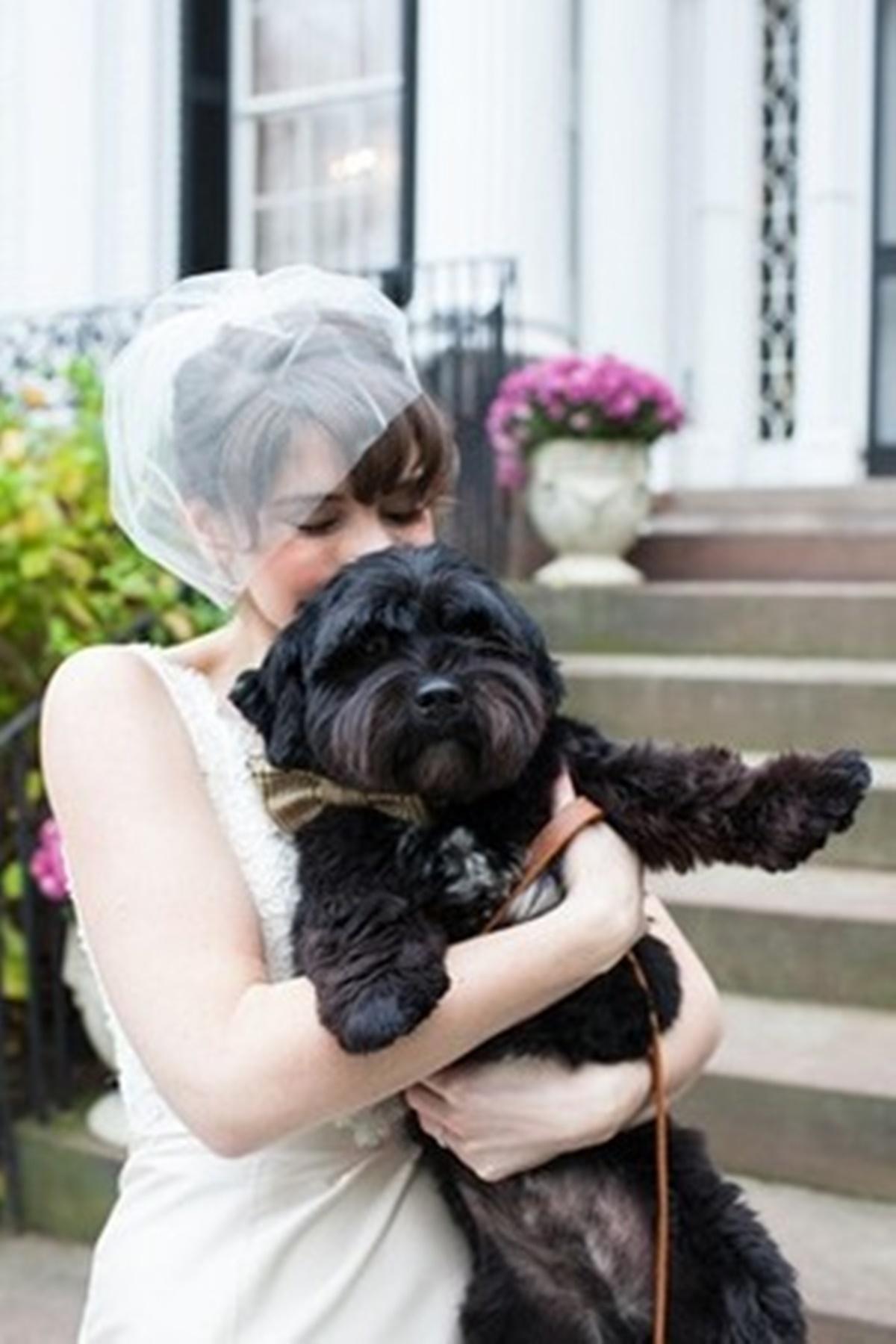 cane in braccio alla sposa