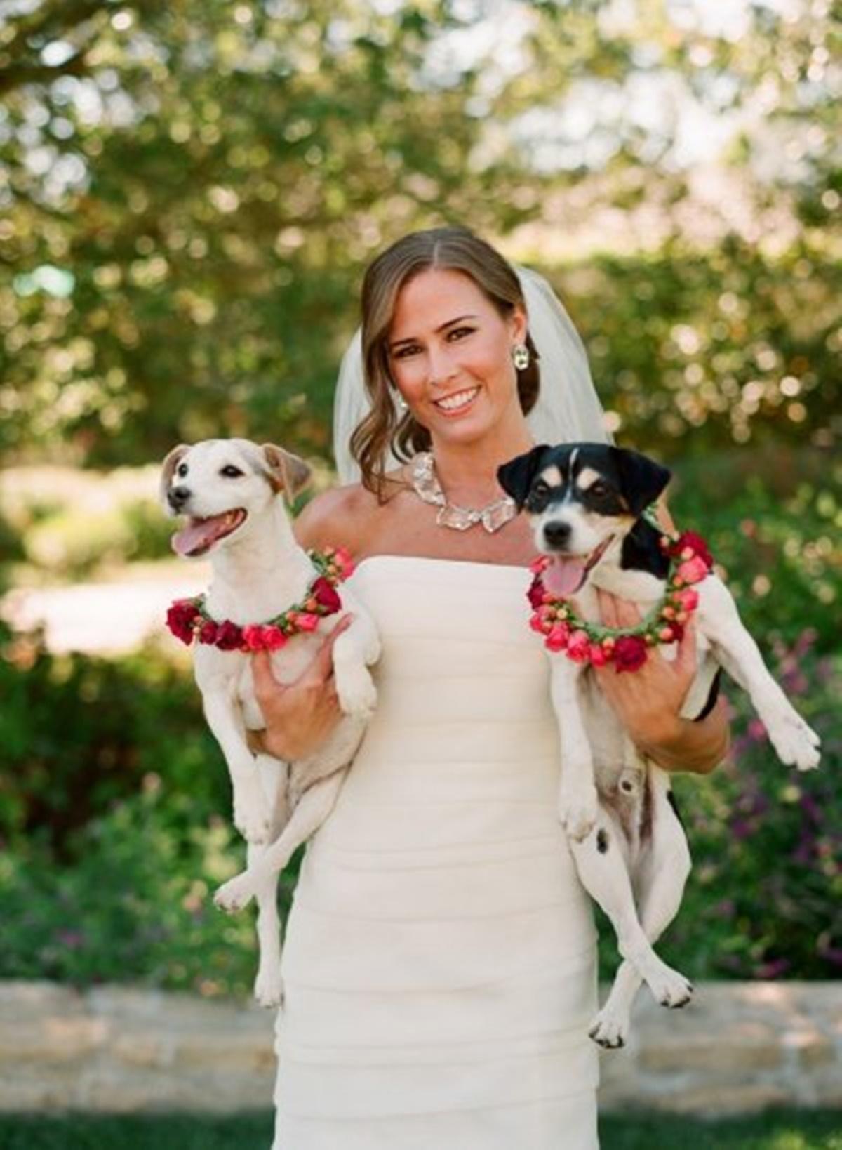 sposa con cani in braccio