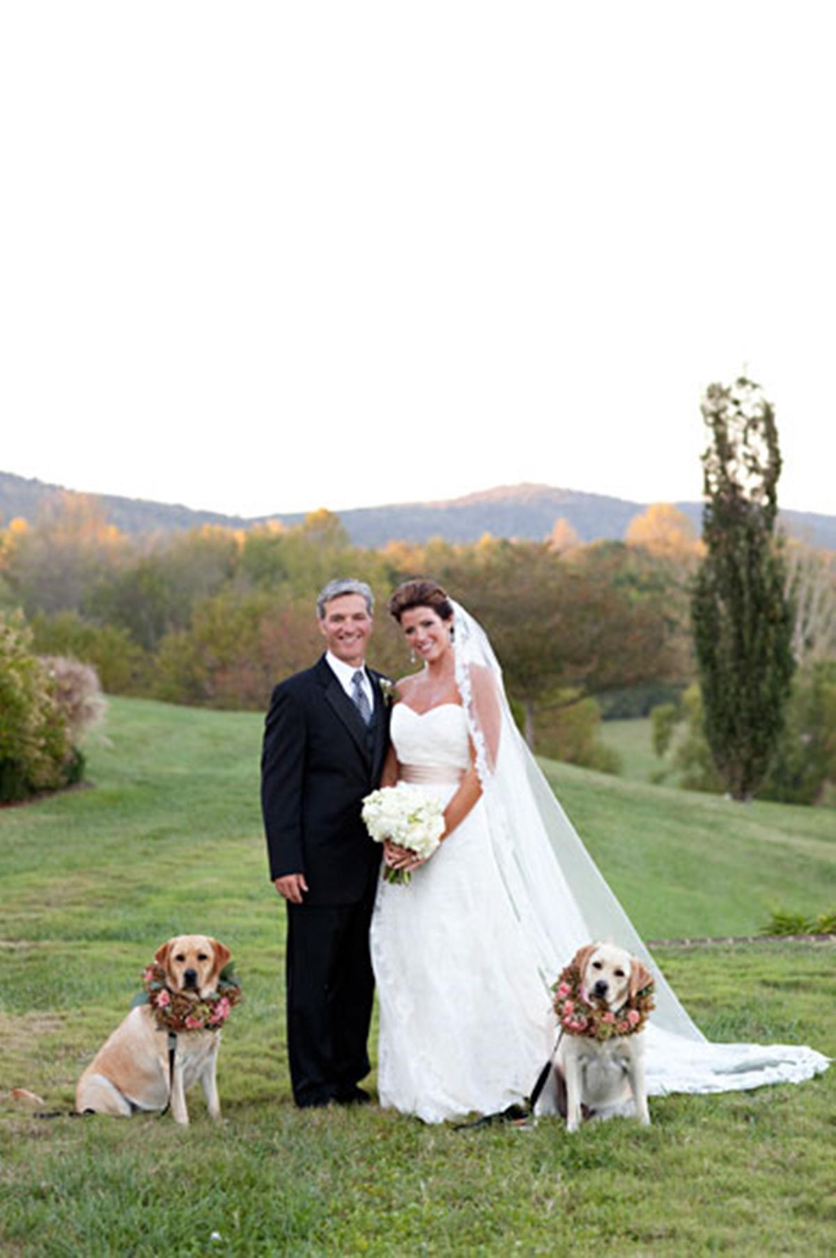 cani e matrimoni-cani di fianco agli sposi