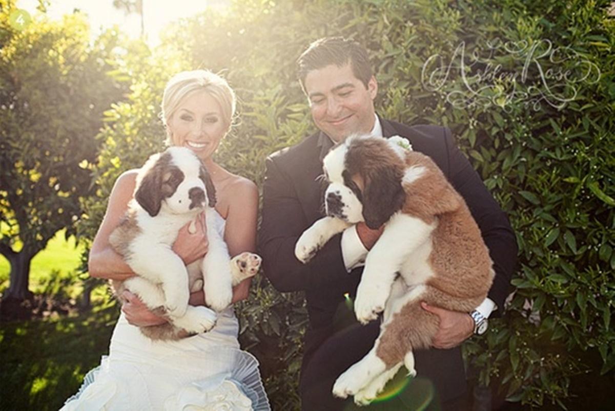 cani e matrimoni-cani di coppia