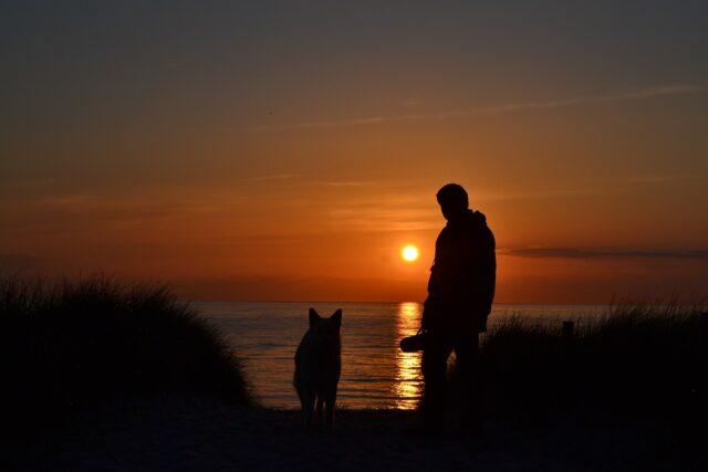 amicizia uomo e cane