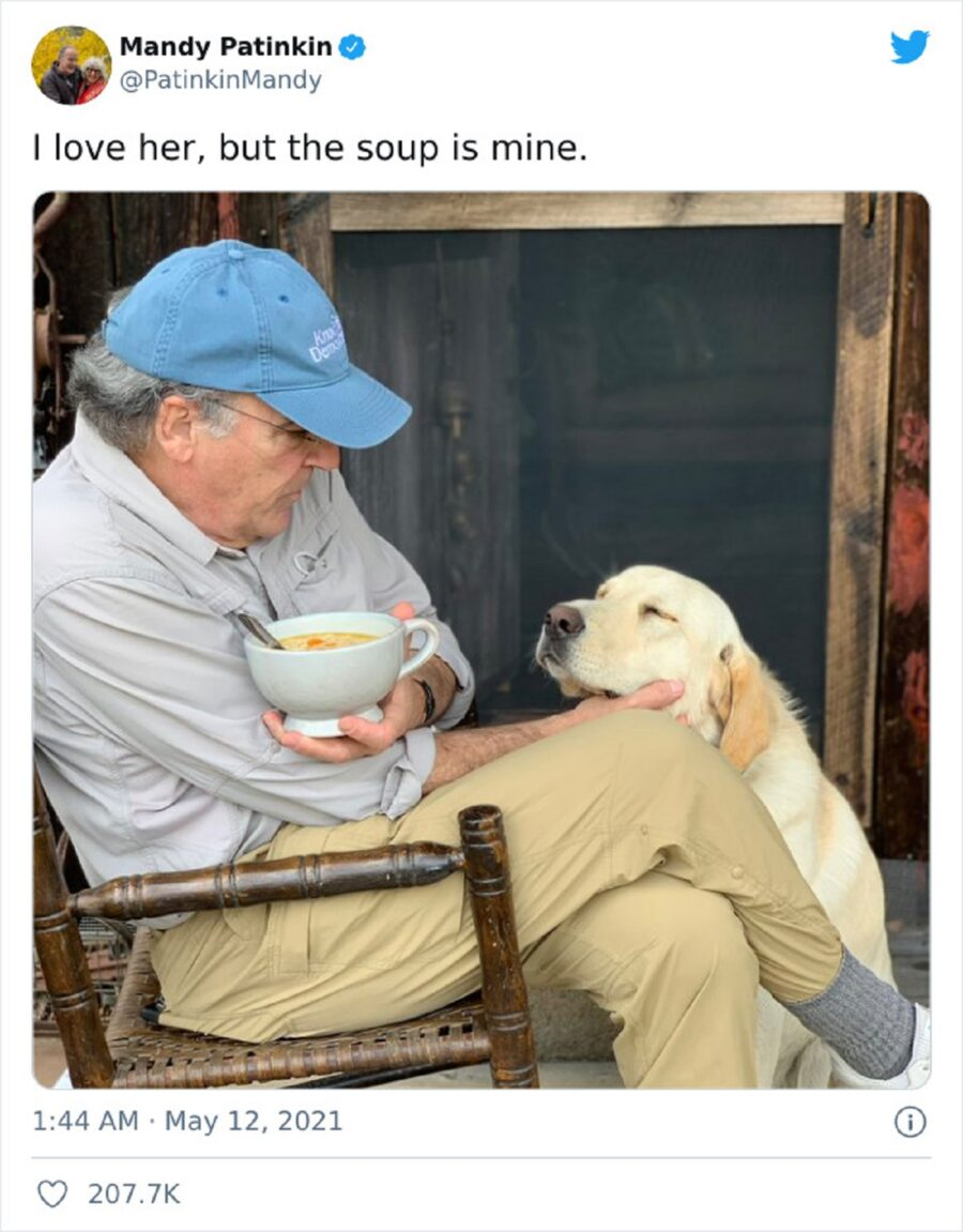 cane papà coccole