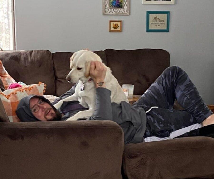 cane sale sopra uomo divano