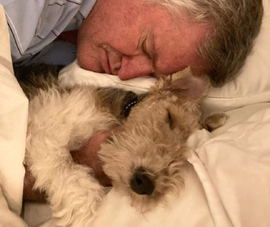 cane felice di stare accanto papà