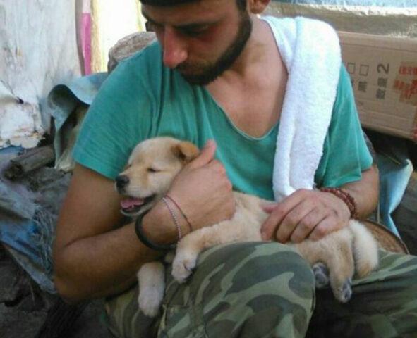 Cucciolo di cane con un ragazzo