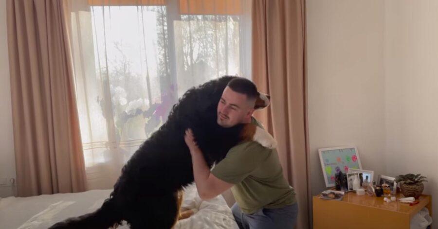 Cane abbracciato al padrone