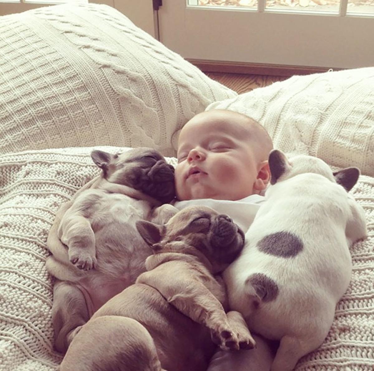 bambino e cagnolini