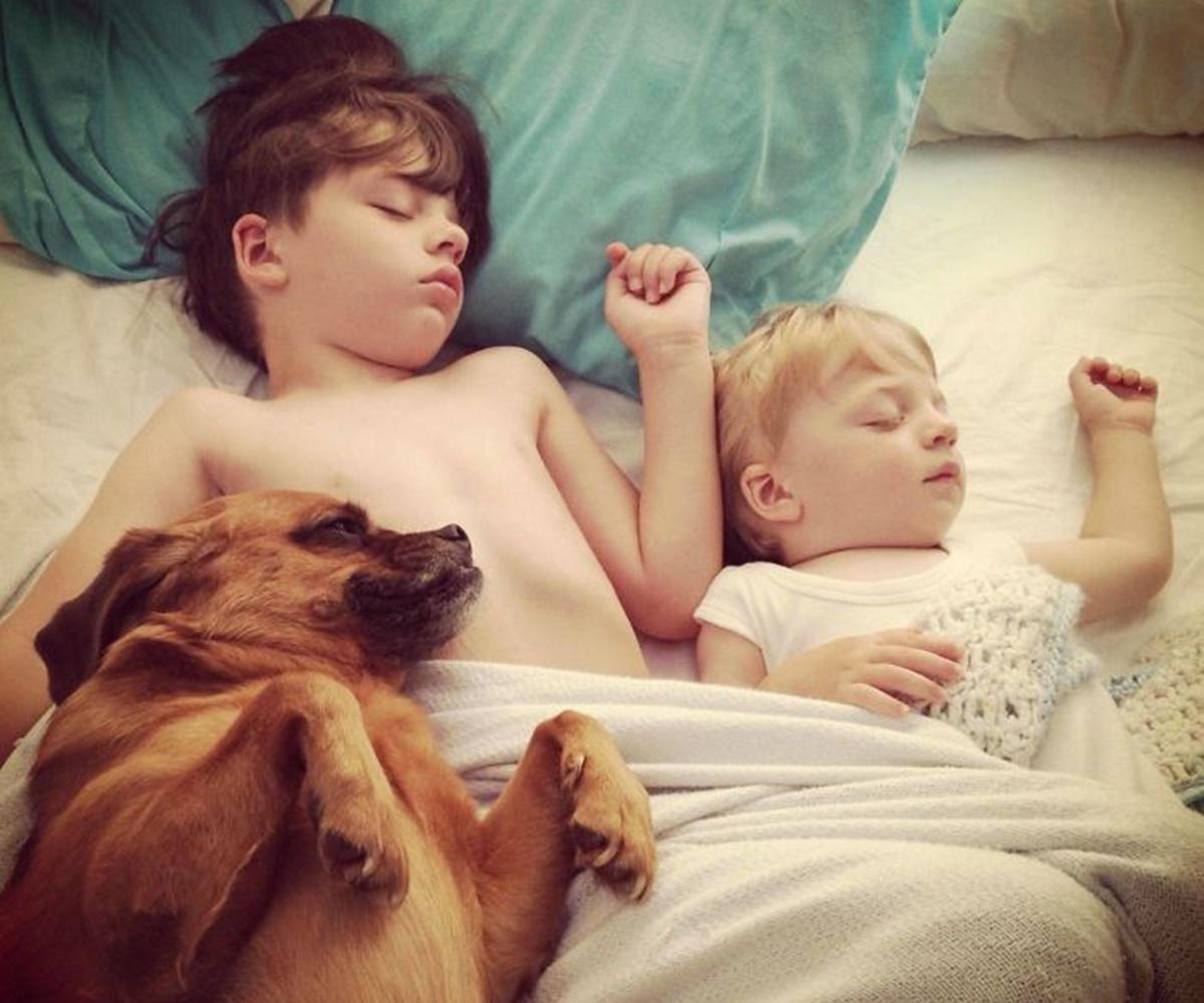 cane con bambini