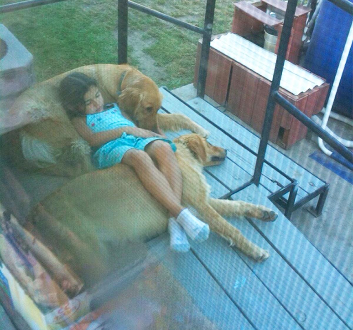 bambina tra due cani