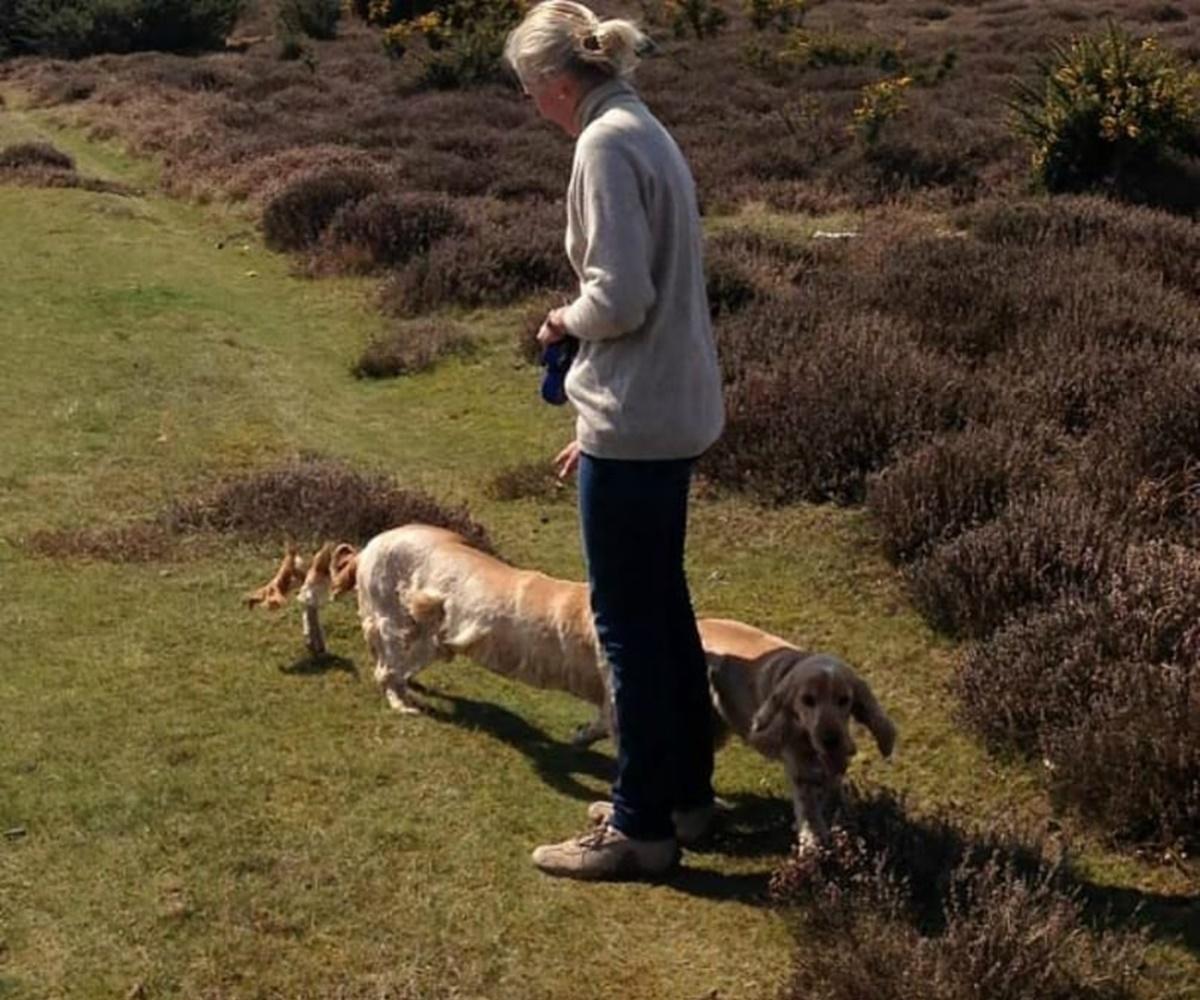 cane lungo con padrona