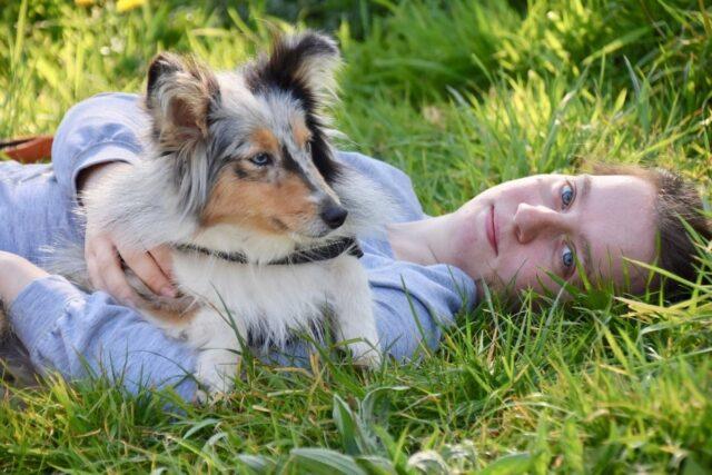cane su ragazza su un prato