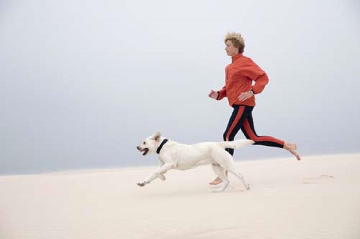 cane e padrona corrono nella neve