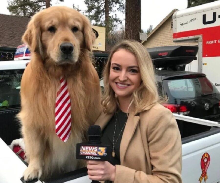 cane con cravatta rossa bianca