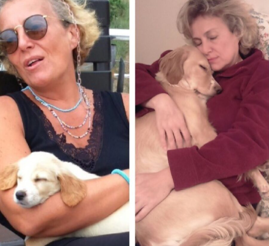 cane in braccio proprietaria