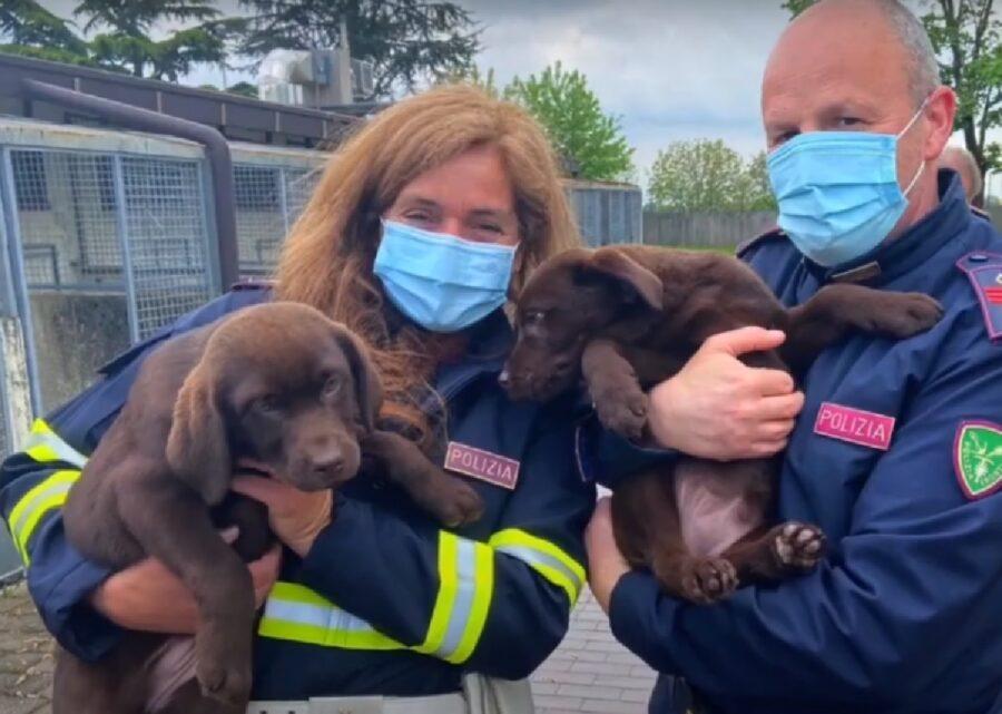 poliziotti tengono cani salvati