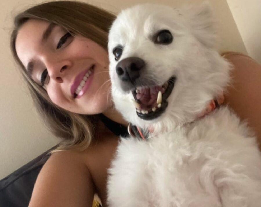 cane bianco felice sorriso