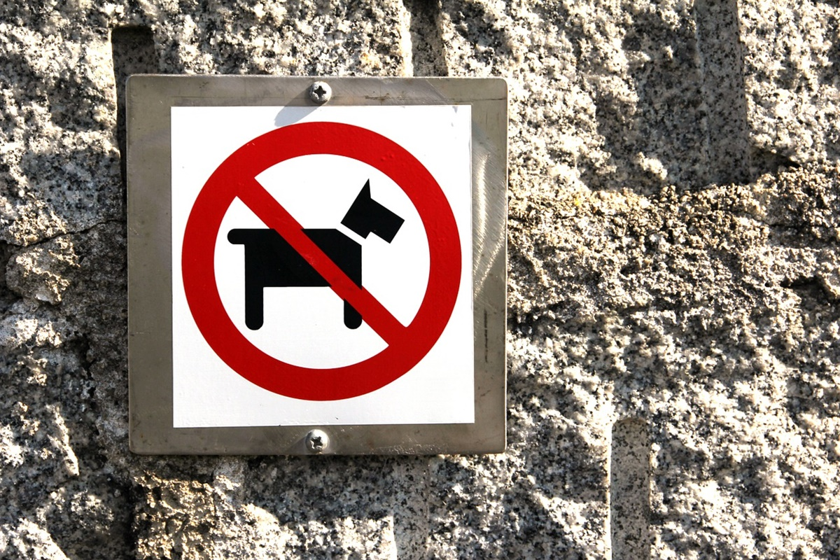 divieto cani