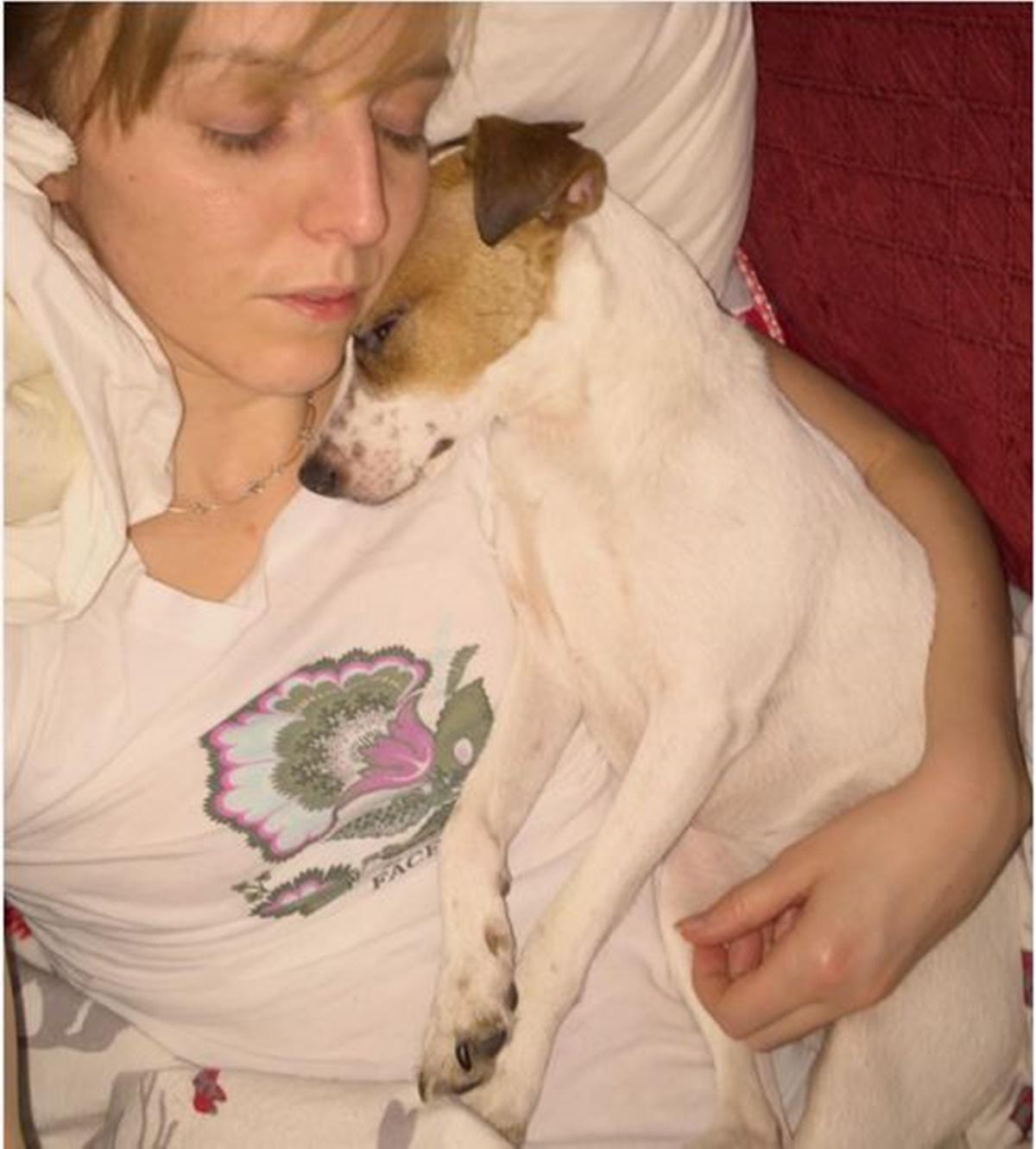 cane dorme