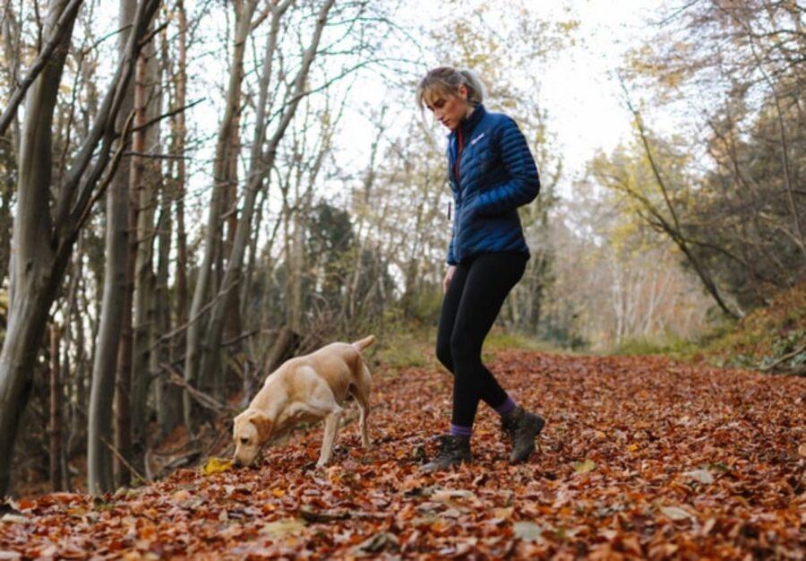 bosco foglie cane