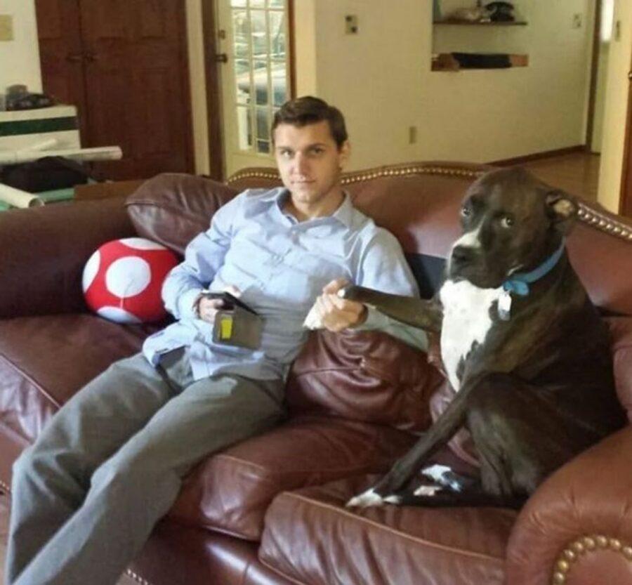 divano papà cucciolo
