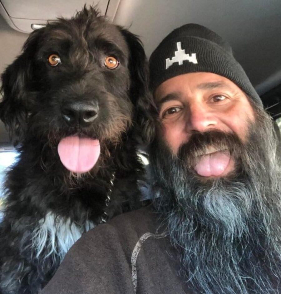 cane peloso barba