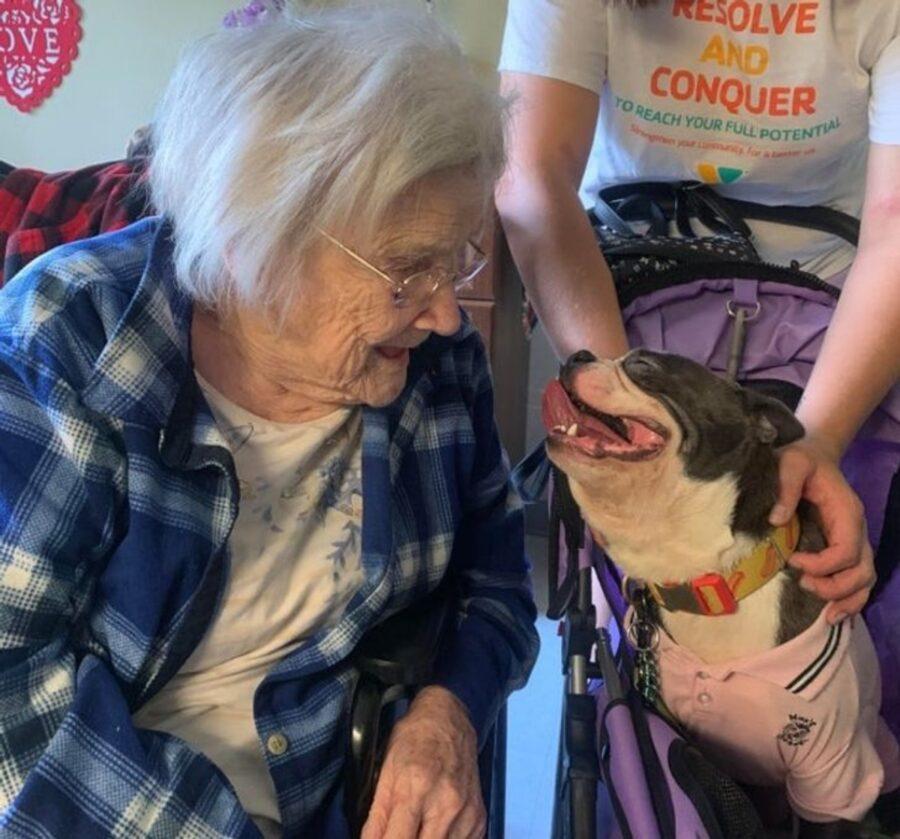 cucciolo sorriso nonna