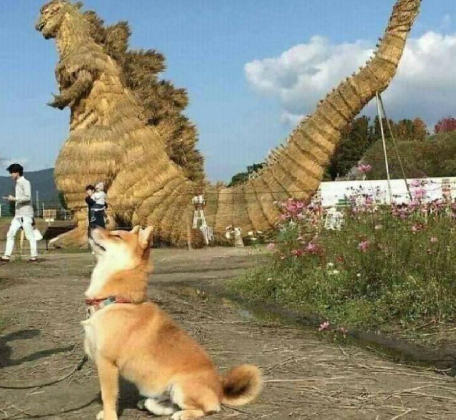 cucciolo cane godzilla spalle
