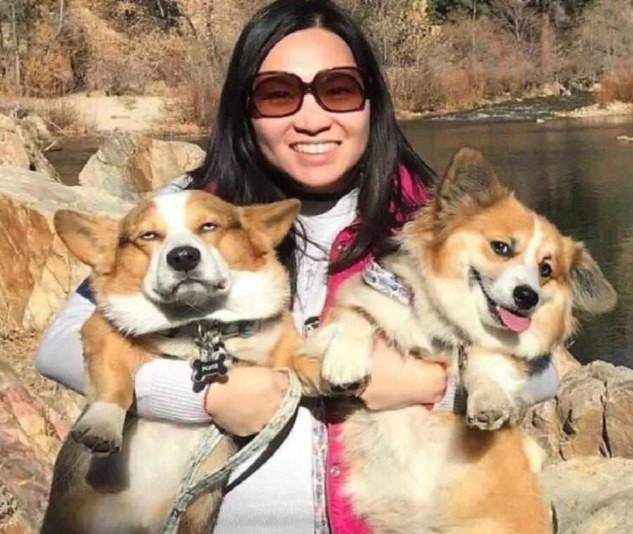 coppia di cani abbraccio immagine